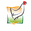 Le Poulet du Périgord